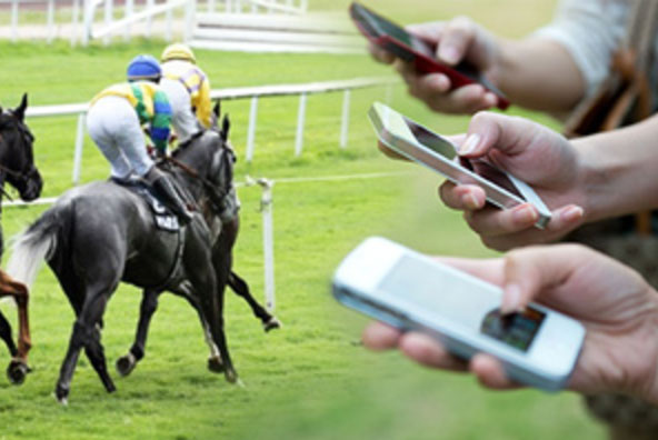 horse racing mobile betting